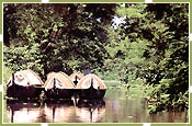 Backwater, Kerala Tours & Travels